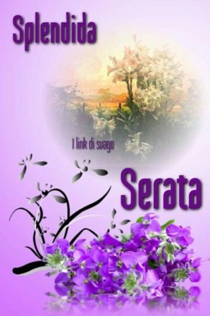 Belle immagini di Buona Serata (1)