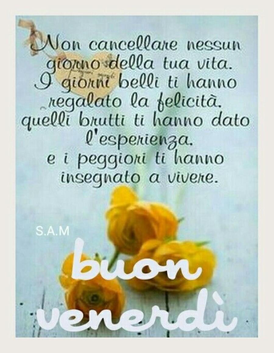 Buon Giorno e Buon Venerdì a tutti (4)