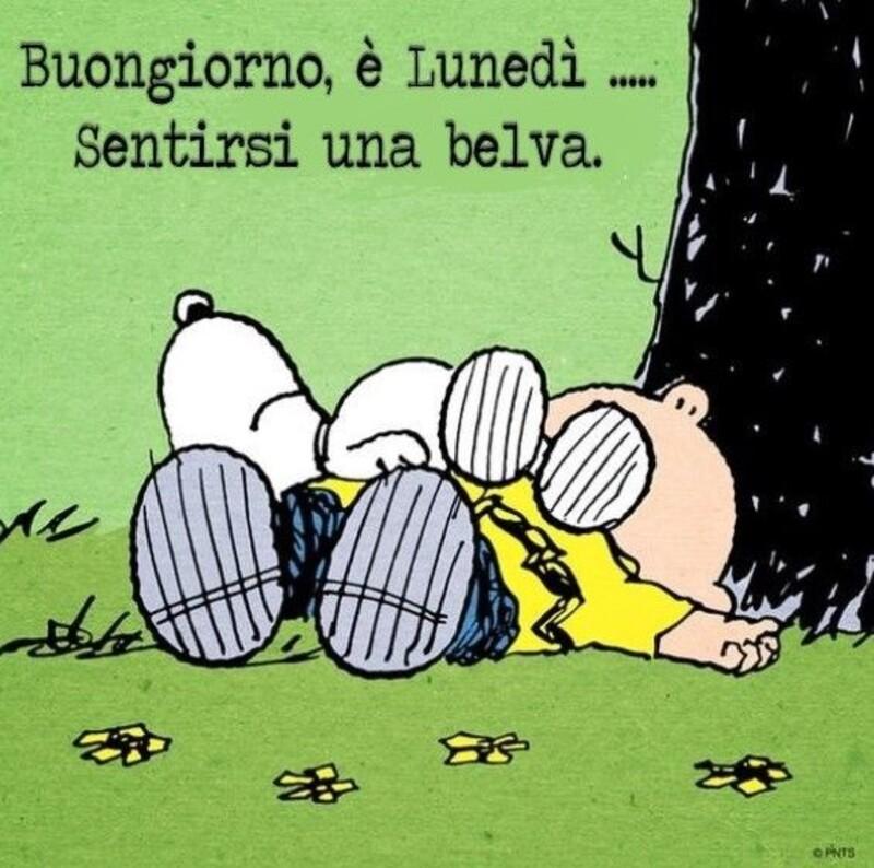 Buon Lunedì da ridere assieme a Snoopy (1)