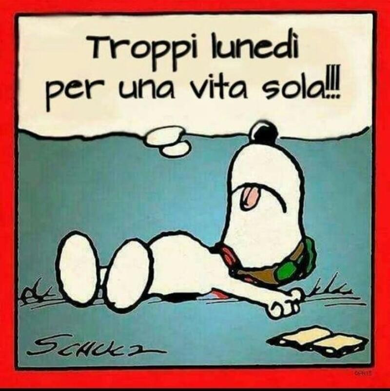Buon Lunedì da ridere assieme a Snoopy (2)