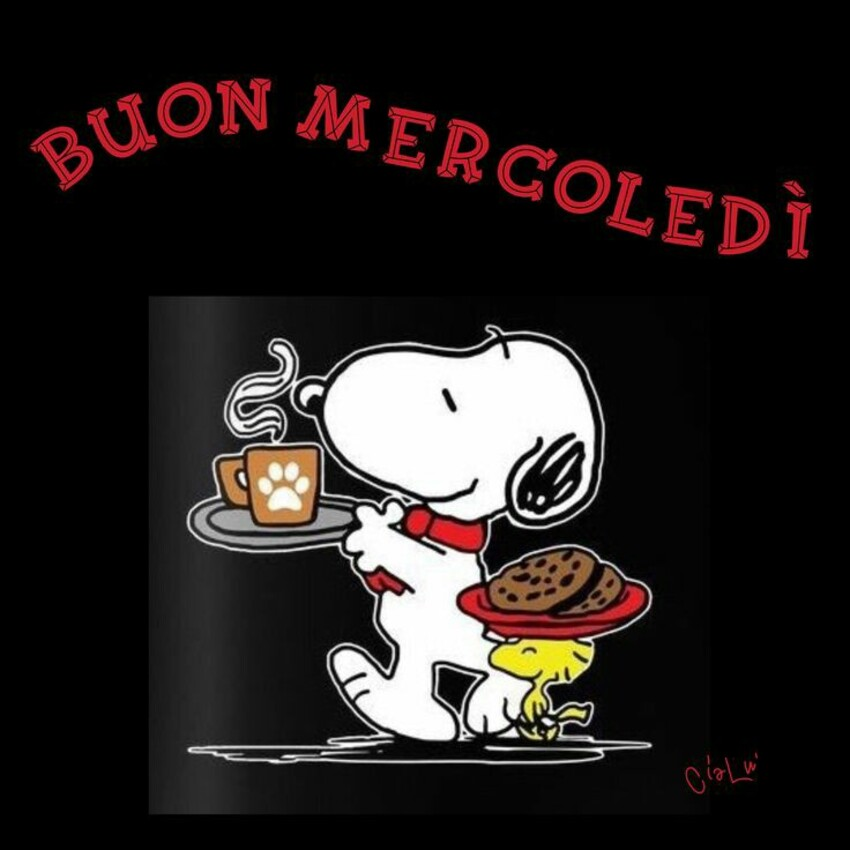 Buon Mercoledì Snoopy (2)