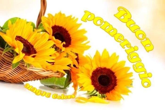 Buon Pomeriggio con i fiori (3)