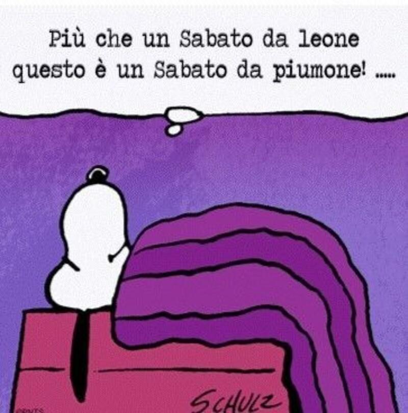 Buon Sabato immagini divertenti Snoopy