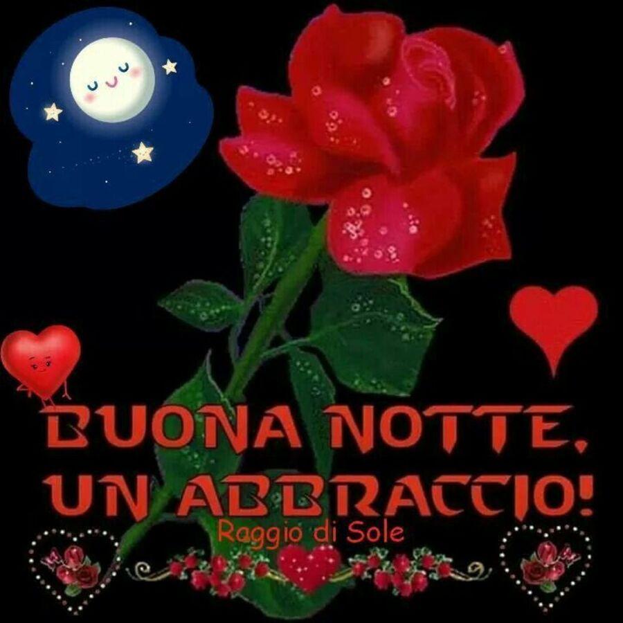 Buonanotte con le rose (2)