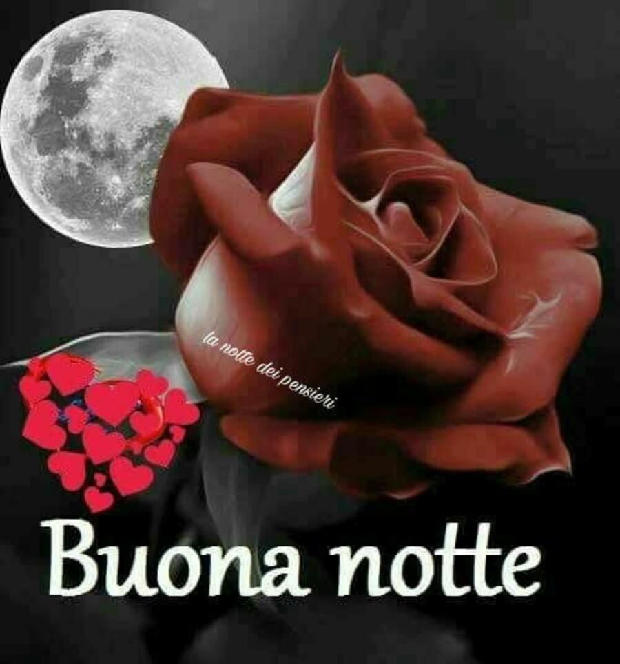 Buonanotte con le rose (3)
