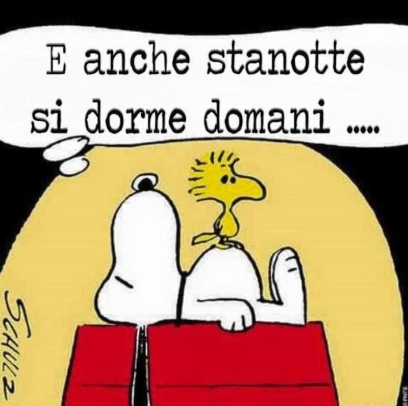 Buonanotte vignette con Snoopy (1)
