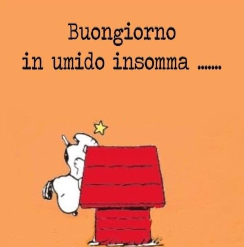 Buongiorno vignette con Snoopy (5)