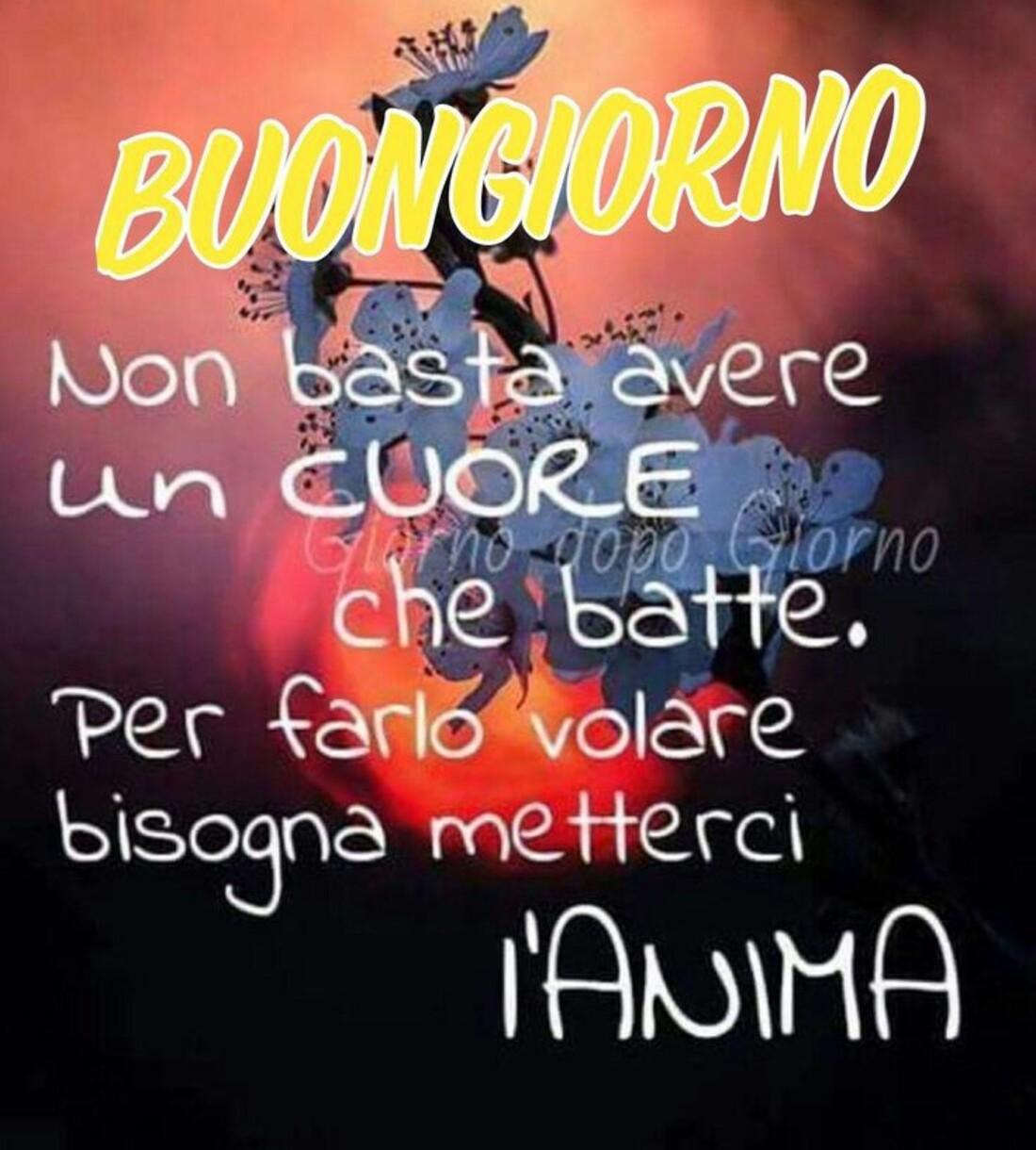 Caffè Buongiorno link (10)