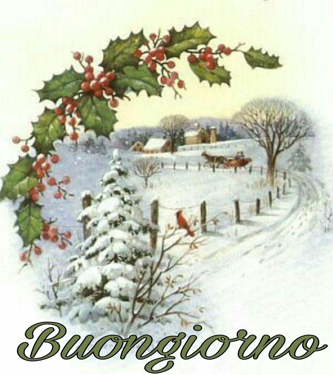 Link di Buongiorno invernali (5)