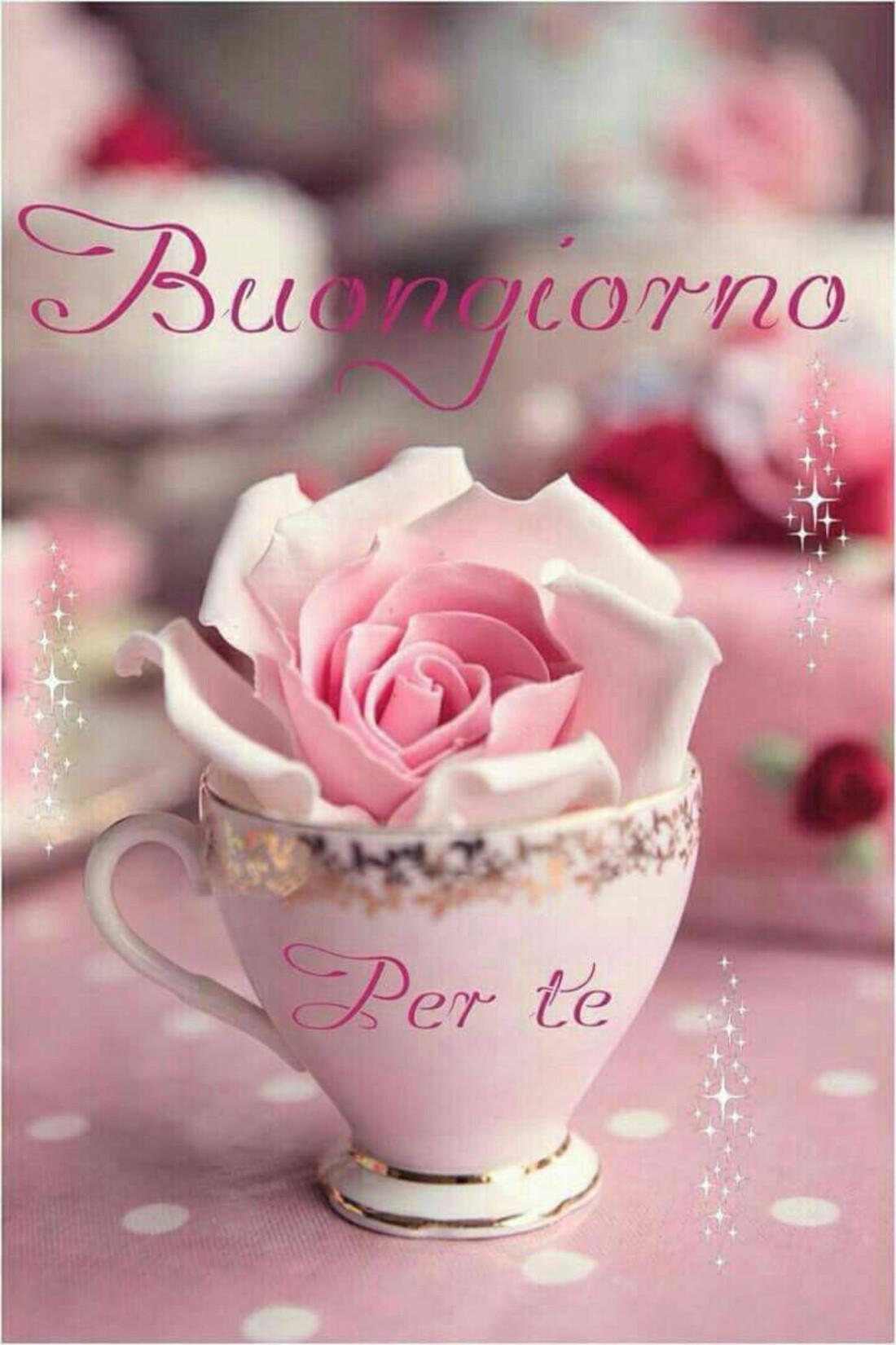 Foto Immagini Del Buongiorno.Per Messenger Immagini Del Buongiorno 10 Baciogiorno It